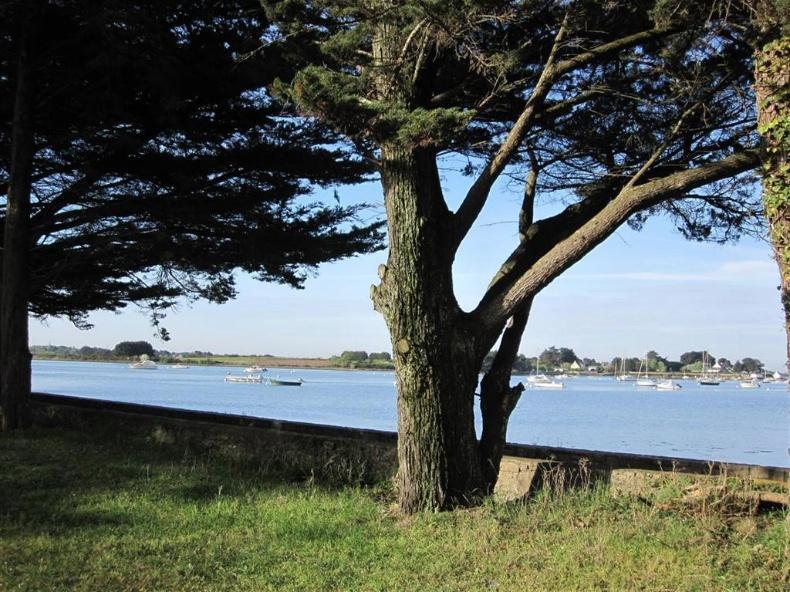 Vue mer imprenable Golfe du Morbihan VENDU
