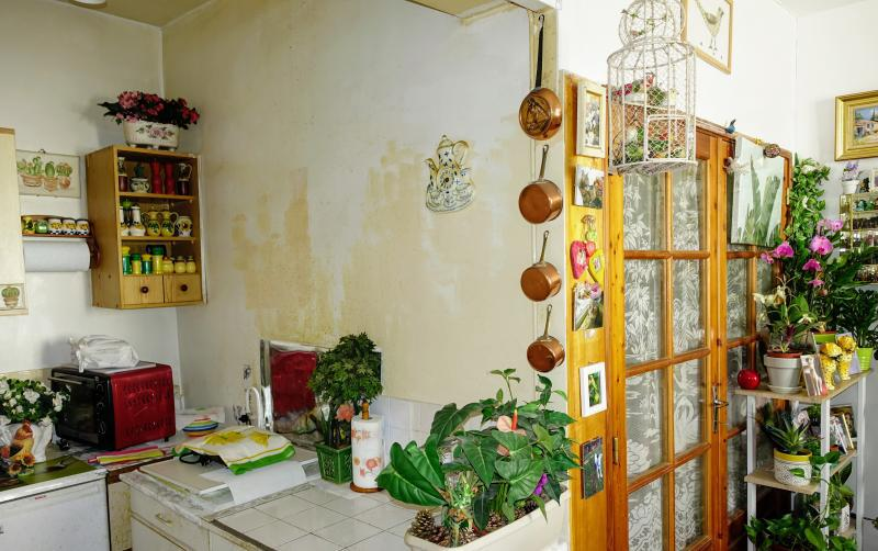 Appartement Viager bon potentiel