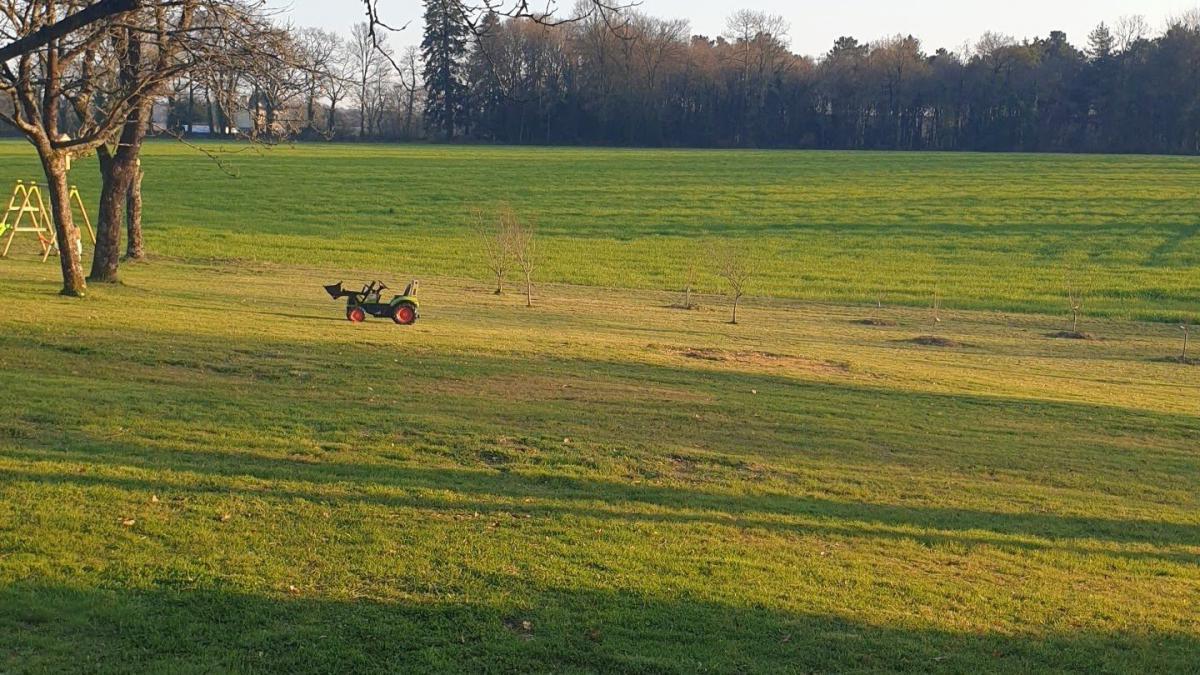 Grand terrain constructible arboré 15 km de Vannes